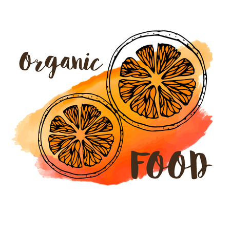 Image of an orange on a watercolor background for design design in a culinary theme