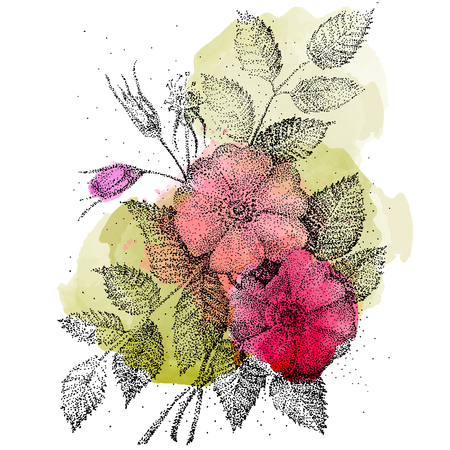 tea pink roses. Drawing by hand. Vector illustration can be used for web design, booklets, print cards, textile t-shirts, print elements and other.
