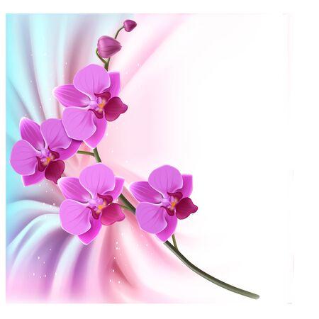 Orchideenzweig, Vektordesign. Karte, kreativer Stil 3d. Design der Feiertagsgrußkarte oder des Banners. EPS 10 Vektorgrafik