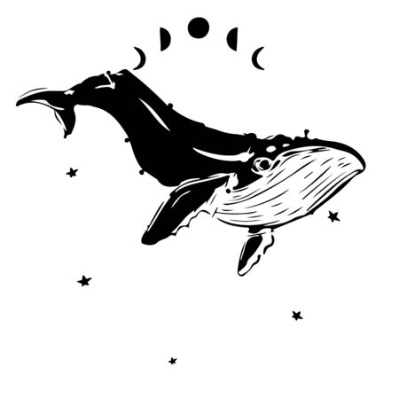 hand drawn whale on watercolor background.. Stars sky. Artistic galaxy . For T-shirt print, kids and children fashion collection.