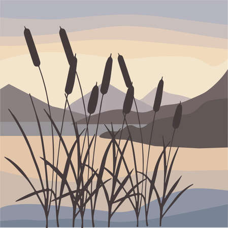 Vector Illustration of Lake Night Scene With Grass Silhouette. landscape vector