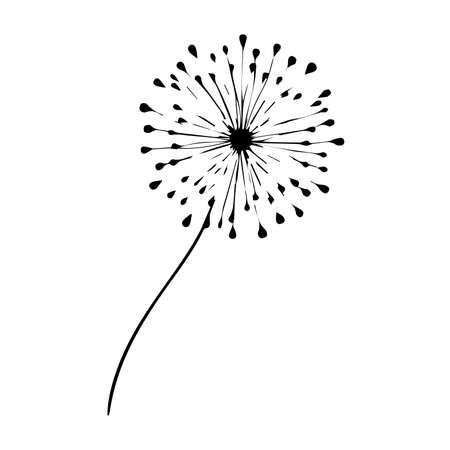 Blow Dandelion on white background. Hand Vector Illustration