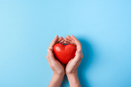 the big red heart in women's hands isolated on a blue background. Top view. Copy space
