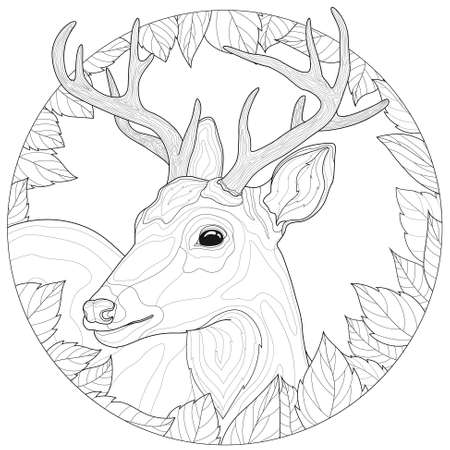 Deer. Leaves around. Coloring book antistress for children and adults. Illustration isolated on white background.Zen-tangle style.