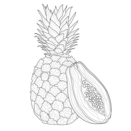 Pineapple and Papaya.Coloring book antistress for children and adults. Zen-tangle style.Black and white drawing Illusztráció