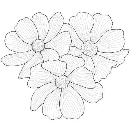 Beautiful flowers.Coloring book anti stress for children and adults. Zen-tangle style.Black and white drawing