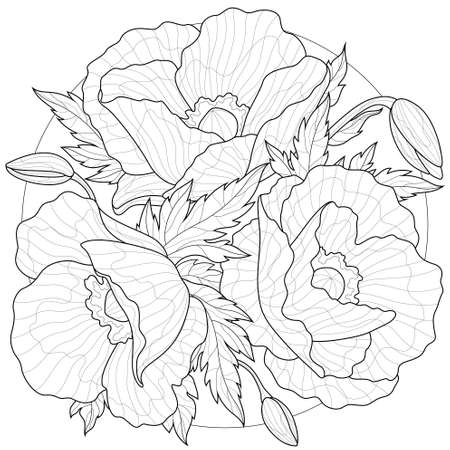 Poppies. Flowers.Coloring book antistress for children and adults. Illustration isolated on white background.Black and white drawing.Zen-tangle style.