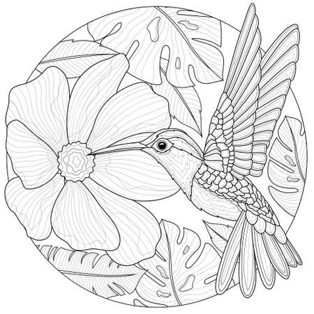 Hummingbirds and flowers.Coloring book antistress for children and adults. Illustration isolated on white background.Black and white drawing.Zen-tangle style. Иллюстрация
