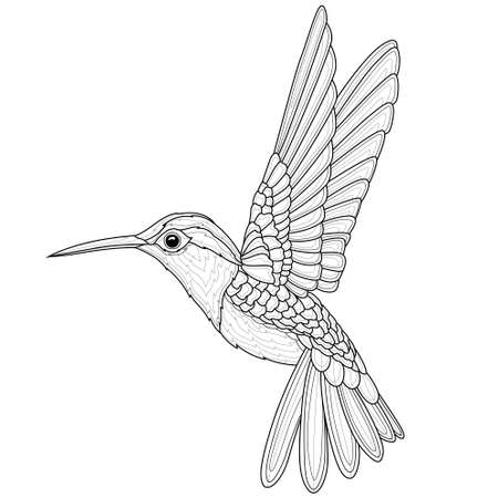 Hummingbirds. Coloring book antistress for children and adults. Illustration isolated on white background.Black and white drawing.Zen-tangle style. 向量圖像