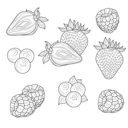 Berries. Strawberries, raspberries and blueberries.Coloring book antistress for children and adults.Zen-tangle style.Black and white drawing