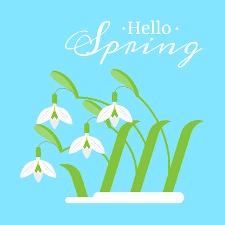 Vector flat illustration of spring flowers snowdrops on a blue background.