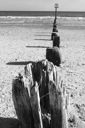 groynes: Poole Beach Groynes Stock Photo