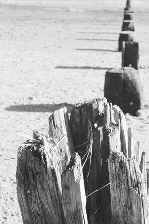 groynes: black and white groynes