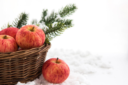 Christmas сomposition with red apples in basket and branch of snow-covered christmas tree