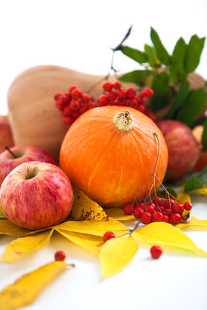 Autumnal stll life - pumpkins, apples and ashberry with fall leaves  Stock Photo