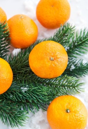 Fresh tangerine with  spruce branch on the snow