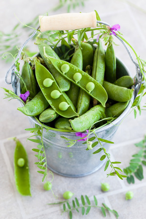 Fresh green peas with leaf and flower in a bucket