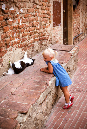 interested: Little girl is interested in a cat in the street of the old Italian town