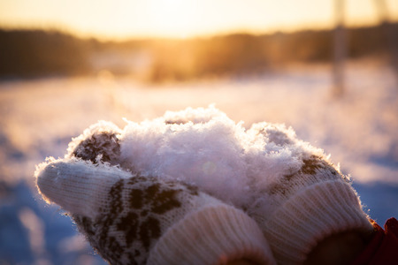 snow day: Fluffy sparkling white snow on hands in winter