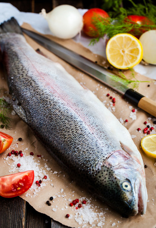 redfish: Raw salmon on cutting board with veggies and spices