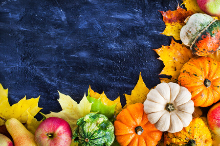 Autumnal colorful pumpkins, apples and fallen leaves  on dark background with copy space for text