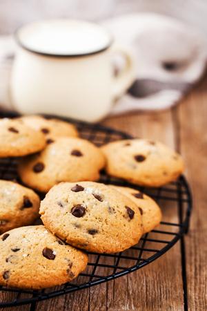 Homemade freshly baked chocolate chips cookies  免版税图像