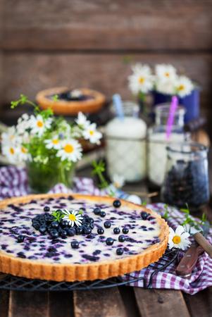 Fresh homemade creamy blueberry tart (open pie) on rustic