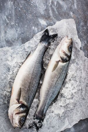 Raw fresh sea bream fish, top view, gray background