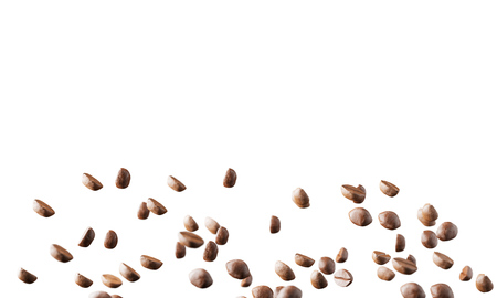 Coffee beans on a white background. Mock up. 3d rendering Stock Photo