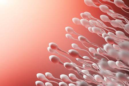 The movement of the sperm on a red background. Banque d'images - 111492504