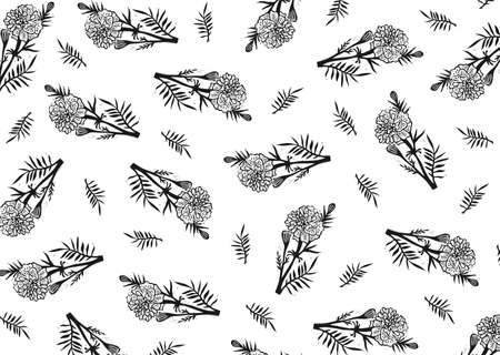 Vector black and white marigold. Black and white floral background. Floral illustration. Floral background. Marigold pattern. Pattern vector background.