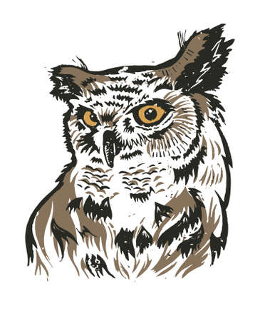 Illustration of an owl. Owl vector graphic. Scanned linocut with the image of an owl. Graphic illustration of an owl.
