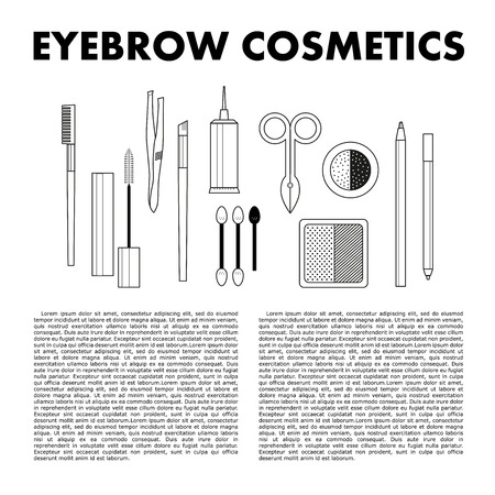 brows: Stylish eyebrow make up collection. Vector guide. Illustration