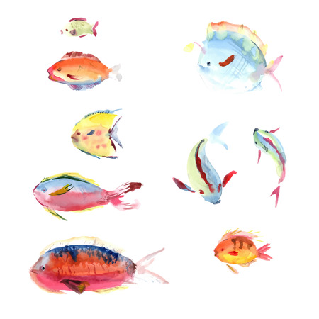 barracuda: Watercolor hand drawn fishes collection on white background. Vector fish set. Illustration