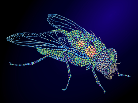 rhinestone: Hand made fly portrait. Colorful rhinestone pattern. Diamond and crystal picture of insect on black backdrop. Good for print design, advertisement, packaging, book or magazine illustration. Stock Photo