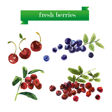 mezcla de frutas: Vector set of watercolor fruits on white background. Fresh food illustration. Good for magazine and book articles, poster design, restaurant menu template.