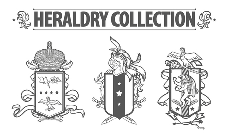 Vector heraldry emblem collection. Coat of arms template. Reklamní fotografie - 49144316