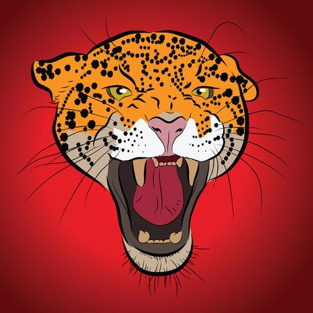 jaguar: Vector jaguar retrato. Cabeza de Jaguar en el fondo rojo.
