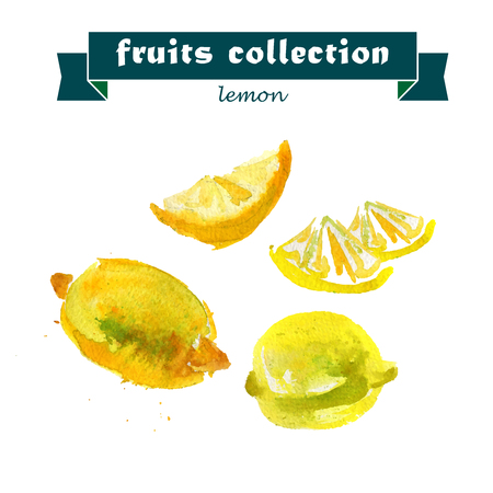 citrus tree: Vector set of watercolor lemon elements on white background. Cute illustration is good for magazine or book, poster and card design, menu cover.