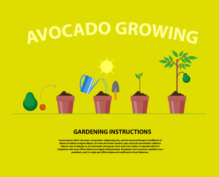 grow: Vector flat illustration of gardening elements with text place. Gardening flat icons collection.