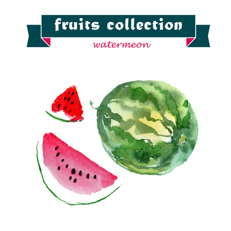 tropical fruit: Vector set of watercolor watermelon elements on white background. Cute illustration is good for magazine or book, poster and card design, menu cover.