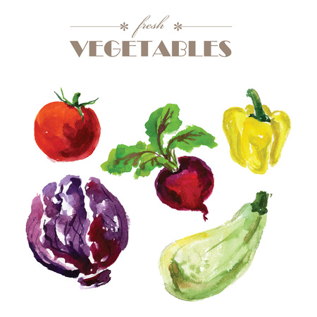 Vector set of watercolor fresh vegetables on white background. Fresh food illustration. Good for magazine and book articles, poster design, restaurant menu template.
