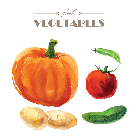 naturally: Vector set of watercolor fresh vegetables on white background. Fresh food illustration. Good for magazine and book articles, poster design, restaurant menu template.