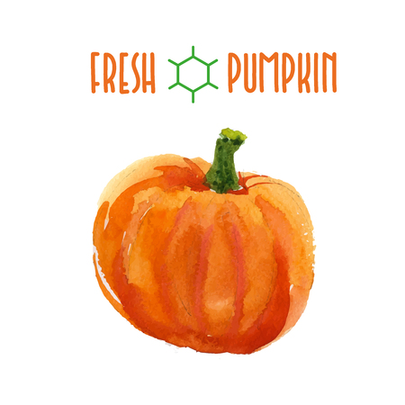 pumpkin patch: Vector set of watercolor pumpkin elements on white background. Cute illustration is good for magazine or book, poster and card design, menu cover. Illustration