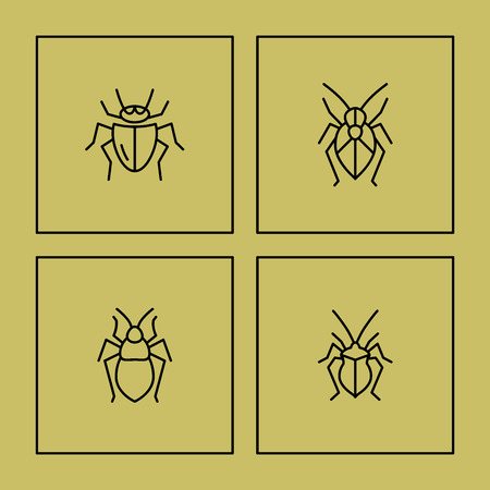 simple logo: Vector flat bug logo collection. Simple beetle icon.