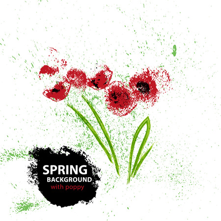 splattered: Vector background with hand drawn floral elements. Watercolor poppy bouguet isolated on white background splattered green paint drops. Goog for card, invitation, wedding, any graphic design.