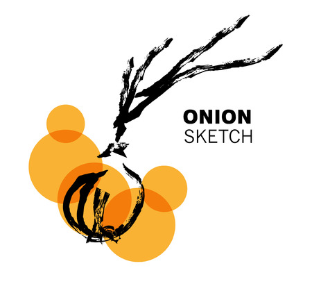 Vector hand drawn vegetables sketch. Artistic and flat food illustration. Good for magazine, book or article illustration, graphic print design.