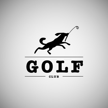 desig: Vector flat golf logo design. Golf player icon, sport logo, golf club insignia, print desig, any advertising sample. Stock Photo
