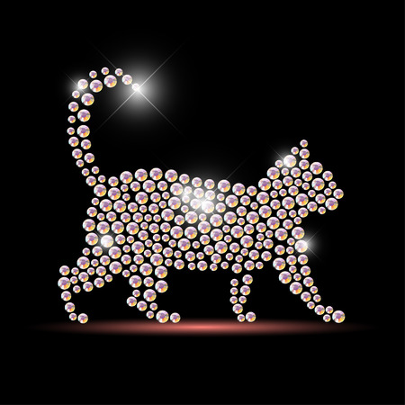 Vector cat portrait made with rhinestone gems isolated on black background. Animal icon. Jewelry pattern, hand made product. Shining pattern. Animal silhouette, pet walking. Illustration
