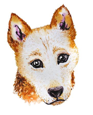 Portret van de waterverf het artistieke oranje die hond op witte achtergrond wordt geïsoleerd. Leuke getrokken hoofd van het huisdierendier. Pommeren puppy. Nieuwjaarsymbool, Kerstmiskaart, Kerstmisembleem. Stockfoto
